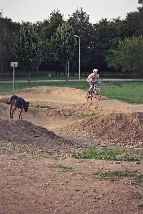 bike park-6