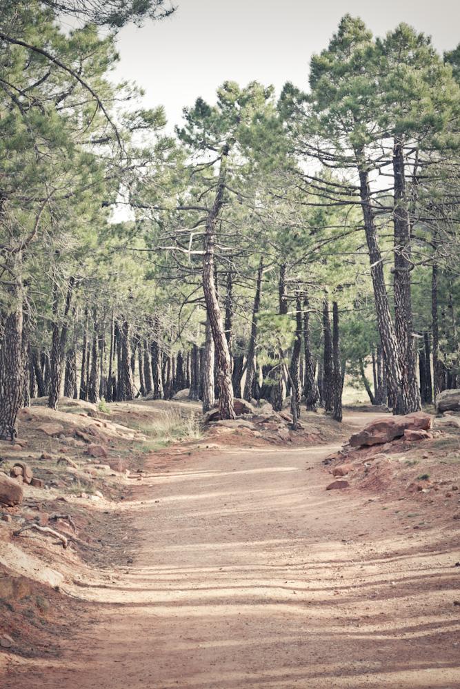 albarracin path