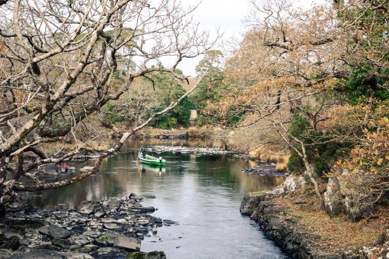 ireland-2016-muckross-lake-10