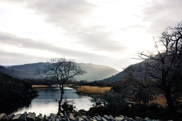 ireland-2016-muckross-lake-11